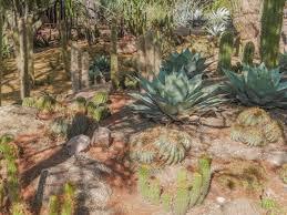 Scottsdale Botanical Gardens Desert Botanical Garden In Is Recommended Part Of