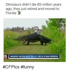 Funny Dinosaur Meme - dinosaurs didn t die 65 million years ago they just retired and