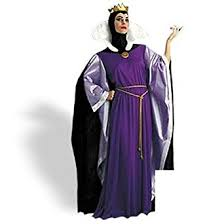 Halloween Costumes Snow White Amazon Std Size Women 12 14 Disneys Tm Snow White Evil