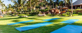 Hawaii travel yoga mat images Fitness and wellness aulani hawaii resorts spa jpg