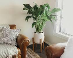 Brazilian Home Design Trends Interior Design Trends Etsy