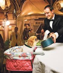 Dogs At Dinner Table Dave Barry U0027s 2008 Holiday Gift Guide Miami Herald