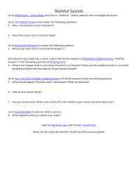 human skeleton quiz questions u2013 hd m com