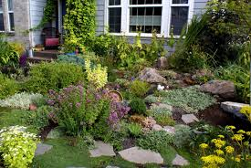 Rocks In Gardens Backyard Rock Garden Ideas