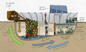 self sustaining garden how about this self sufficient garden pool farm vision times