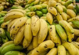 Tiny Banana Bananas Are All Clones And 6 More Bananas Facts About Bananas