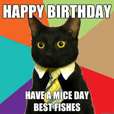 Cat Birthday Memes - happy birthday cat meme cat planet cat planet