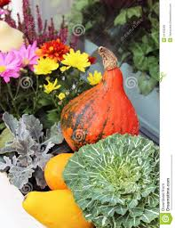 mix of beautiful flowers in the fall terrace garden stock photo