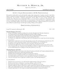 Sample Resume For Supply Chain Management by Cv Samples For Procurement Managers