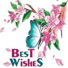 the popular best wishes gifs everyone s