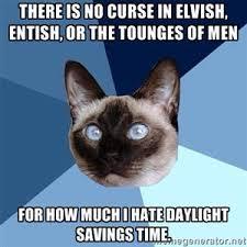 Feeling Sad Meme - feeling sad 皓 chronic illness cat