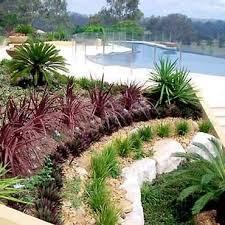 Pool Garden Ideas 138 Best Pool U0026 Landscaping Ideas Images On Pinterest