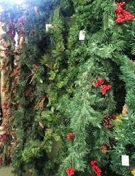 caring for christmas greenery dambly u0027s garden center