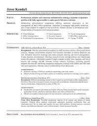 Resume Summary Ideas Example Resume Summary Resume Example And Free Resume Maker