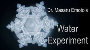 negative energy experiment dr masaru emoto s water experiment words are alive youtube