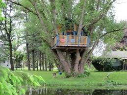 how to build a treehouse hgtv