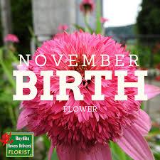 flowers in november november birth flower the boydita flowers delivered blog flowers