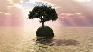 the last tree on earth wide by mclaren on deviantart