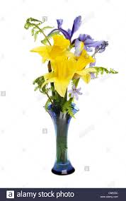 vase of flowers isolated stock photos u0026 vase of flowers isolated