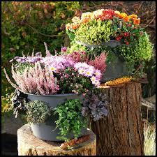 extraordinary self watering vertical planter create an garden