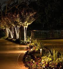 moonlighting lights outdoor decorating companies