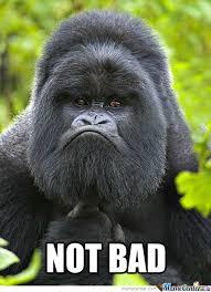 Gorilla Memes - not bad gorilla by allmustburn meme center
