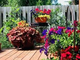 Ideas For Container Gardens Container Garden Ideas Elcorazon Club