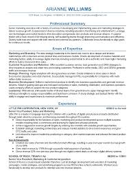 Resume Samples Marketing by Vp Marketing Resume Free Resume Example And Writing Download