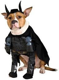 halloween batman costumes amazon com batman the dark knight pet costume large rubie s
