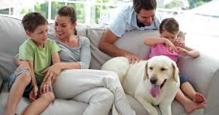 Cute Family Relaxing Together On The Couch With Their Labrador Dog - Family in living room