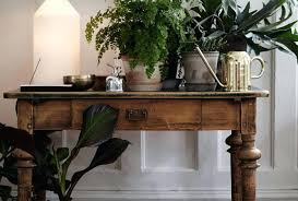 indoor plants that need little light plant indoor office plants wonderful office plants my fiddle
