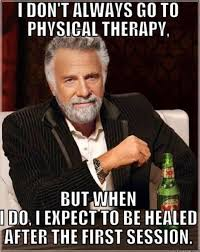 Funny Internet Meme - 7 common myths about physical therapy debunked physical therapy