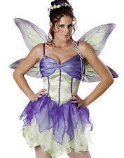 Halloween Costumes Tinkerbell Adults Tinkerbell Costume Ebay
