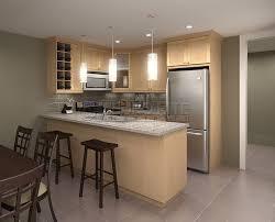 maple kitchen furniture maple kitchen cabinets decoration hsubili com