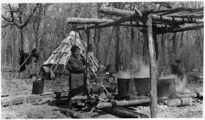 native american edible plants file maple sugar industry nara 285760 jpg wikimedia commons