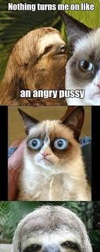 Angry Sloth Meme - sloth ifunny