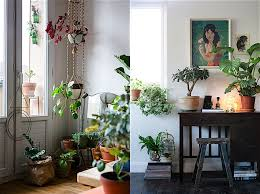 Urban Jungle Living And Styling by Bloom
