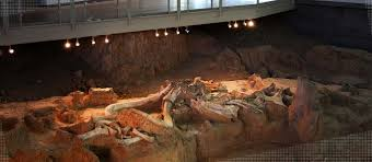 Waco Texas Zip Code Map by Waco Mammoth National Monument City Of Waco Texas