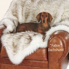 Dog Sofa Blanket 7 Best Furniture Covers And Throws Images On Pinterest Furniture