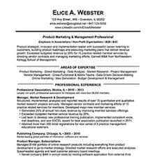 Finance And Insurance Manager Resume Cover Letter For Waitress Job Honors Program Application Essay