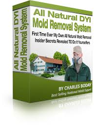 buying a bank owned mold house think you can handle the clean up