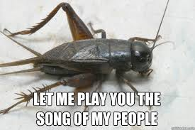 Crickets Meme - let me play you the song of my people bcs cricket quickmeme