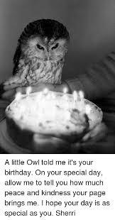 Owl Birthday Meme - 25 best memes about little owl little owl memes