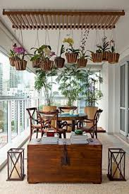 Hanging Plants For Patio 22 Best Orchid Display Ideas Images On Pinterest Orchid Plants