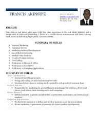 akinsipe resume