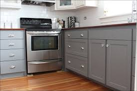 kitchen modern kitchen colours best color for kitchen cabinets