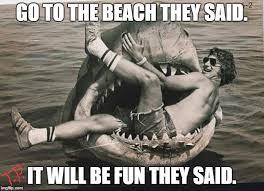 Jaws Meme - jaws imgflip