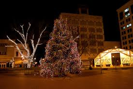 outdoor tree lights for christmas the ultimate way to decorate