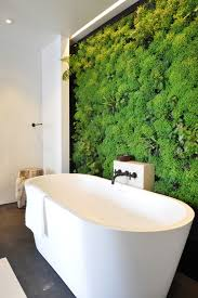 peachy bathroom feature wall ideas 13 best walls images on