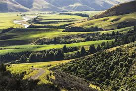Barn Houses For Sale Nz New Zealand Luxury Real Estate And Homes For Sale